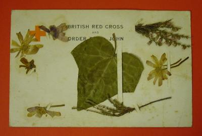 British Red Cross and Order of St John cream postcard decorated with dried flowers and a leaf