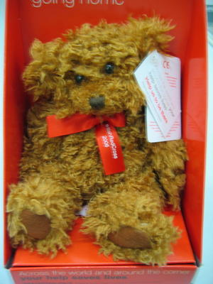 Small teddy bear in presentation box