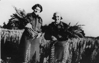 Enid Fordham and Irene England gathering flowers while working at Belsen
