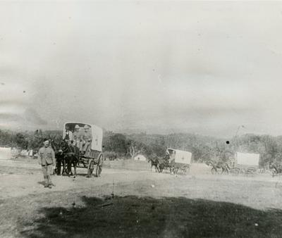 Three Horse drawn Ambulances with the Red Cross on the Side