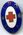 Indian Red Cross and St John Ambulance badge
