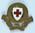 gilt hat badge