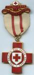 Proficiency in Nursing badge