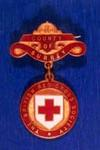 British Red Cross Society County badge for Surrey