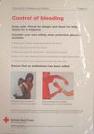 Poster: Poster 1 First Aid for Children and Infants - Control of bleeding.