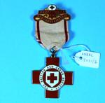 Proficiency in First Aid badge
