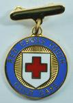 Red Cross Youth proficiency badge in Child Care.