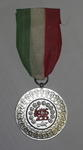 Iranian Red Lion and Sun Society medal, with green/white/red ribbon