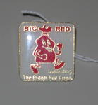 a 'Big Red' badge, with a picture of an animated red rubbish bag 'Supporting The British Red Cross'.