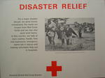 poster: 'Disaster Relief'