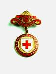 British Red Cross County Badges London Holborn