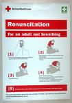 """Resuscitation for an Adult Not Breathing"""