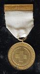 British Red Cross War Medal